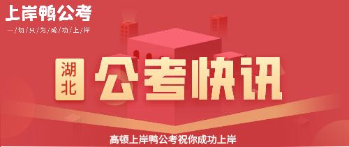 湖北公考网站海报.png